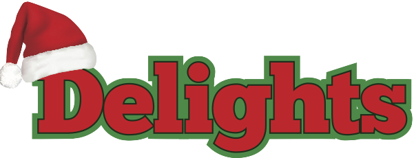 Delights Christmas Light Installation